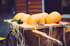 Potirons empilés dans un chariot en bois Photos stock