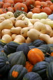 Potirons et courge images stock