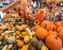 Potirons et courge photographie stock