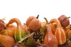 Potirons et courges avec l'automne Photo stock