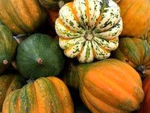 Potirons et courges oranges Image libre de droits