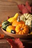 Potirons et feuilles d'automne décoratifs pour Halloween Photographie stock libre de droits