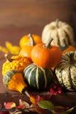 Potirons et feuilles d'automne décoratifs pour Halloween Images stock