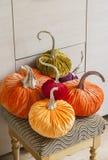 Potirons faits maison pour Halloween Potirons exclusifs de concepteur pour décorer les vacances de Halloween Potirons faits de ve Photo libre de droits