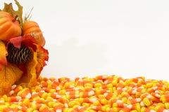 Potirons Halloween de bonbons au maïs Photographie stock