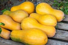 Potirons jaunes pour le gruau délicieux Repas végétarien utile image stock