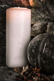 Potirons moissonnés avec des lames d'automne Photo libre de droits