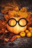 Potirons moissonnés avec des lames d'automne Images libres de droits