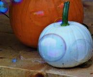 Potirons multicolores avec des bulles flottant par image libre de droits