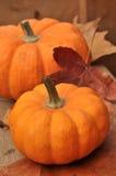 Potirons oranges Image stock