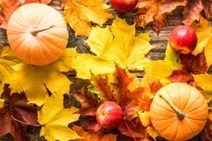 Potirons oranges avec les feuilles d'automne rouges de pommes sur le fond en bois photo libre de droits