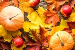 Potirons oranges avec les feuilles d'automne rouges de pommes sur le fond en bois photos libres de droits