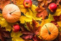 Potirons oranges avec les feuilles d'automne rouges de pommes sur le fond en bois photos stock