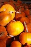 Potirons oranges de Veille de la toussaint Photographie stock libre de droits