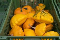 Potirons oranges organiques à un marché d'agriculteurs photos libres de droits