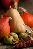 Potirons, pommes et grains Images libres de droits