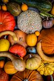 Potirons, sirops et courges assortis Photo stock