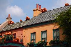 Potirons sur des dessus de toit Photos libres de droits