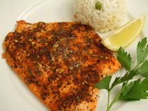 Potlach Salmon Fillet stock images