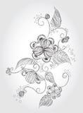 Potlood dat bloem schetst Royalty-vrije Stock Foto's