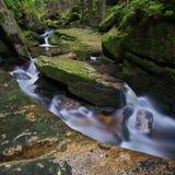 Potok de Jedlovy, montanhas de Jizera, república checa Fotografia de Stock
