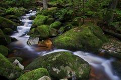 Potok di Jedlovy - corrente dell'abete, montagne di Jizera, repubblica Ceca Fotografia Stock