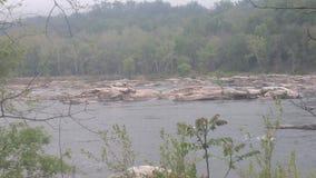 Potomac River Arkivbilder