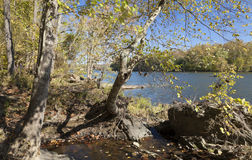 Potomac River in the Autumn Stock Photos