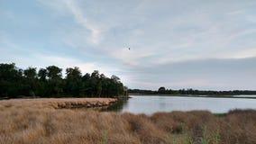 Potomac River landskap arkivbild
