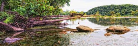 Potomac River panorama Stock Image
