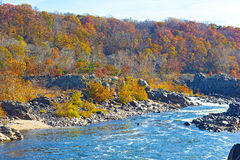 Potomac River and trees in colorful foliage. Potomac River with rapids at Great Fall National Park, Virginia USA Stock Image