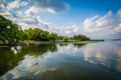 Potomac rzeka w Aleksandria, Virginia Zdjęcia Stock