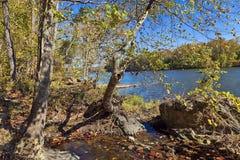 Potomac rzeka w jesieni Zdjęcia Royalty Free