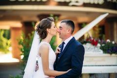 Potomstwa dobierają się, państwo młodzi chodzi ich dzień ślubu i cieszy się sunshine Lato fotografia royalty free
