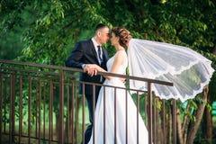 Potomstwa dobierają się, państwo młodzi chodzi ich dzień ślubu i cieszy się sunshine Lato fotografia stock