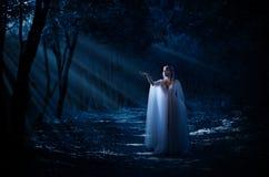 Potomstwa elven dziewczyny w lesie Obraz Royalty Free