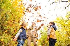 Potomstwa matkują z jej synami w jesień lesie obraz royalty free