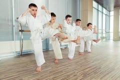 Potomstwa, piękni, pomyślni wielo- etyczni dzieciaki w karate pozyci, Obraz Royalty Free