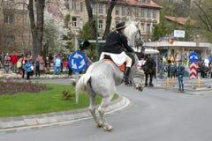 Potomstwa siedzieli na koniu w w centrum Brasov Obrazy Royalty Free