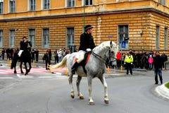 Potomstwa siedzieli na koniu w w centrum Brasov Zdjęcia Stock
