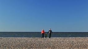 Potomstwa wychowywają z ich młodym dzieckiem na plaży zbiory
