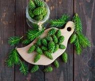 Potomstwa zielenieją jedlinowych rożki na drewnianym tle Obrazy Stock