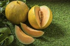 Potomstwo flanca Japo?scy melony lub kantalup?w melon?w ro?liny fotografia stock