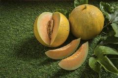 Potomstwo flanca Japo?scy melony lub kantalup?w melon?w ro?liny zdjęcia stock
