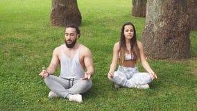 Potomstwo para robi joga outdoors zbiory wideo