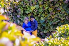 Potomstwo pary ciężarna pozycja w parku Zdjęcie Royalty Free