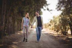 Potomstwo pary mienia ręki podczas gdy chodzący na drodze gruntowej przy oliwki gospodarstwem rolnym Fotografia Stock