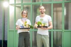 Potomstwo pary mienie boksuje pełno świezi surowi warzywa outdoors obraz stock
