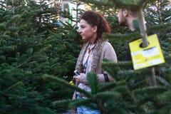 Potomstwo pary zakupu Christmass drzewo Zdjęcia Royalty Free