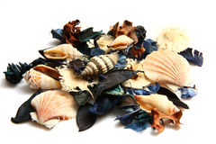 Potpourri. Close-up photo of colorful scented potpourri royalty free stock images